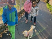 2020-11-09_Hundestaffel (7)