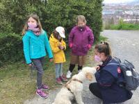 2021-05-03_Hunde spaziergang (15)