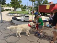 2021-07-23_Hundestaffel Roterplatz (19)