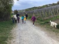 2021-05-03_Hunde spaziergang (13)