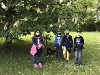 2021-06-09_Hundestaffel Fernsehn (7)